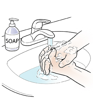 Hands washing with soap in sink.