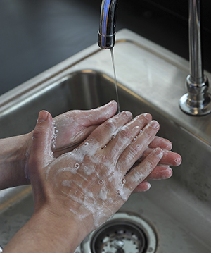 Closeup of hands washing with soap and water in sink.